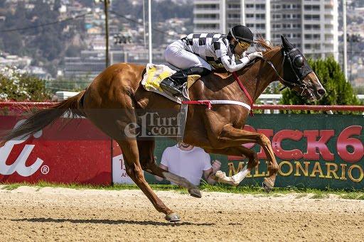 Arabia Wild (Arabian Spirit) se adjudica Condicional (1100m-Arena-VSC).