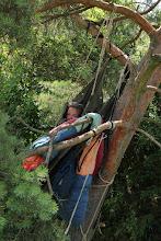 Photo: Výzva: 24 hodin na stromě