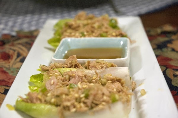 Asian Tuna Salad Appetizers  On Belgium Endive Recipe