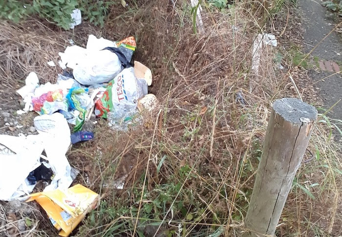 Dumped rubbish leaves Newtown resident with £200 fine