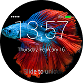 Fish Lock Screen