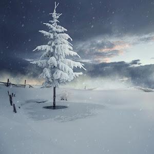 let-it-snow,-let-is-snow.jpg