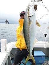 Photo: おおー!やったぜー!4kgオーバーのヒラス!近海では上々のヒラスです!