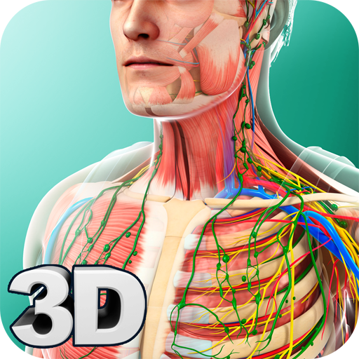 Human Anatomy for Android