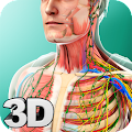 Human Anatomy by visual 3d science APK