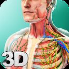 Human Anatomy icon