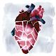 Heart disease (app)