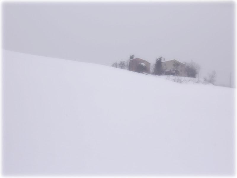 WHITE ALL AROUND di PhotoLoris