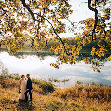 Wedding photographer Olga Kuzmina (Kuzmina). Photo of 28.11.2016