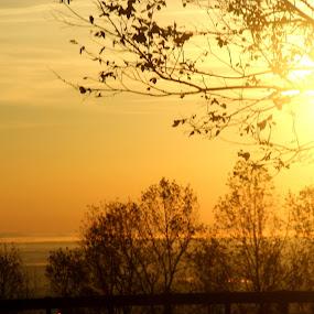 Love letter by Keysha Wallace-Patton - Landscapes Sunsets & Sunrises