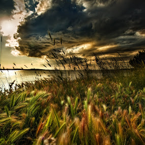 by Vasja Pinzovski - Landscapes Weather