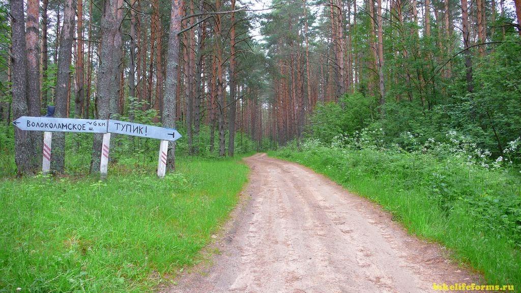 Деревня Бреднево - река Вязьма