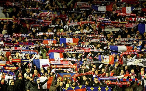 Lyon Football Live Wallpaper screenshot 7