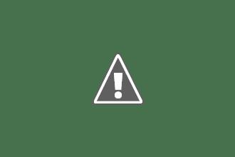 Photo: African elephant bull (Loxodonta Africana) having a dust bath, side view with dust cloud above his head, Etosha National Park, Namibia