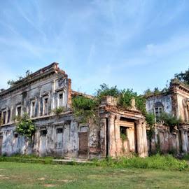 Struggle for existence  by Wasif Chowdhury - Uncategorized All Uncategorized ( architecture, heritage )