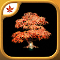 Fire Maple Games Collection icon