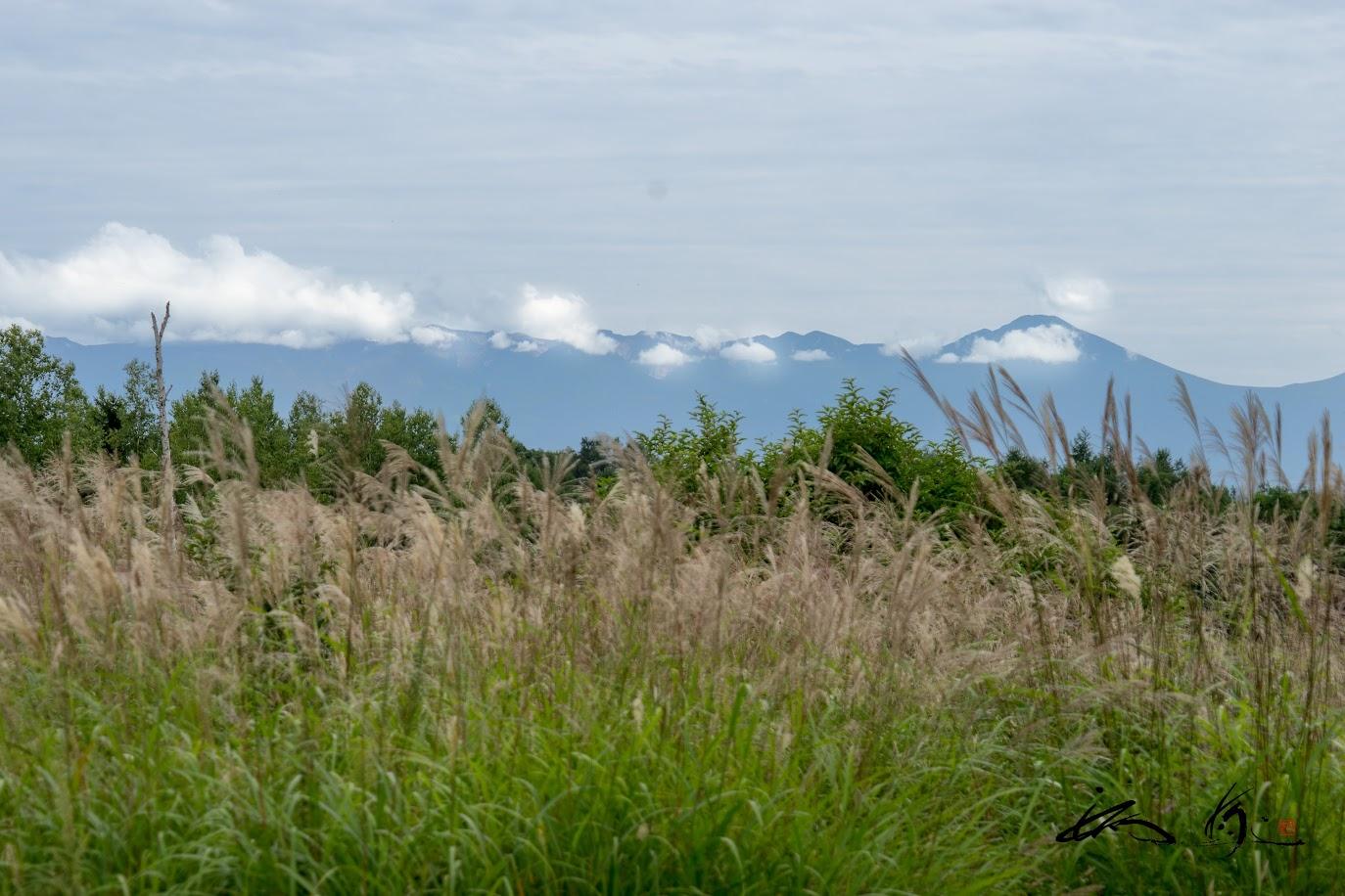 大雪山の山々を望む風景
