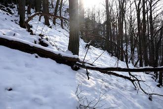 Photo: Visszatekintő!  Kissé jobbra, amely felől jöttünk az ösvényről.
