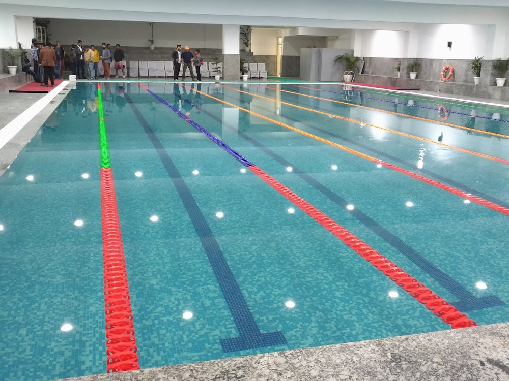 best-swimming-classes-gurgaon-fitso-seals_image