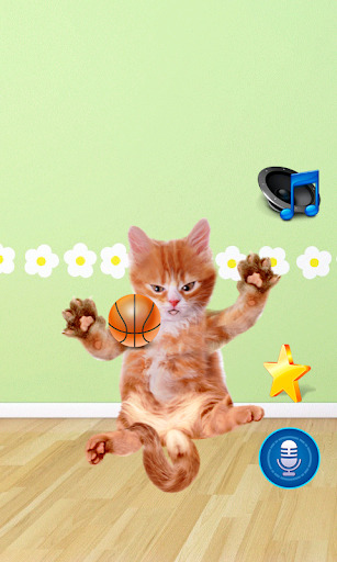 Tickle Talking Cat