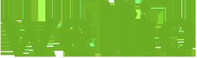 wellio logo