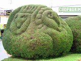 Photo: #003-Sculté avec soin par un des artistes jardiniers