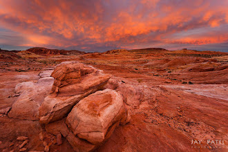Photo: Valley of Fire, NV - www.jaypatelphotography.com