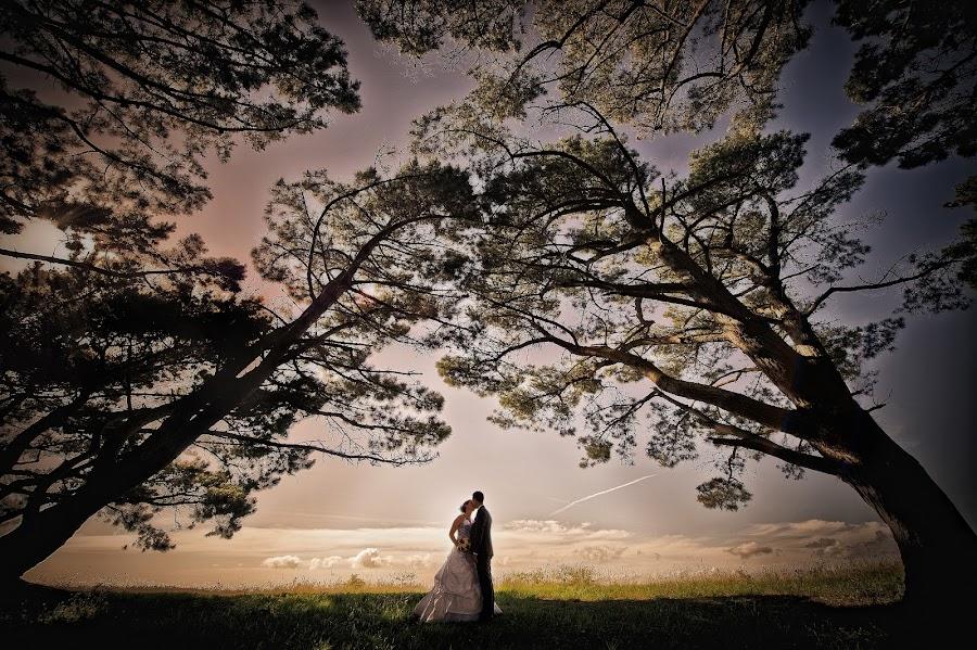 Wedding photographer Yann Faucher (yannfaucher). Photo of 20.05.2015