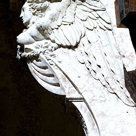 Statua di un angelo by Patrizia Emiliani - Buildings & Architecture Statues & Monuments ( angelo, statua,  )