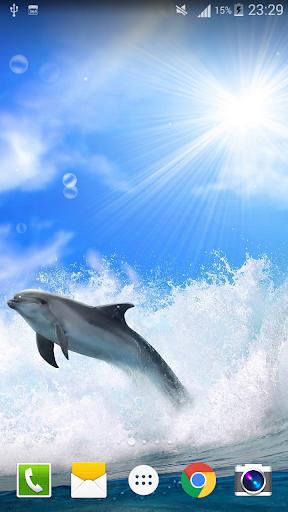 Dolphin Live Wallpaper PRO HD