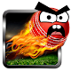 Download Angry Cricket Arcade Style For PC Windows and Mac