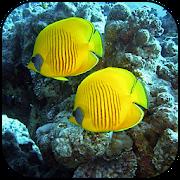 خلفيات العالم تحت الماء APK