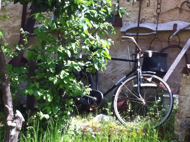 la vecchia bici di streganunzia