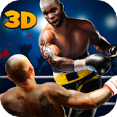 Ultimate Punch Box Fighting 3D