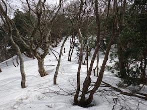 山頂手前は雪が多く