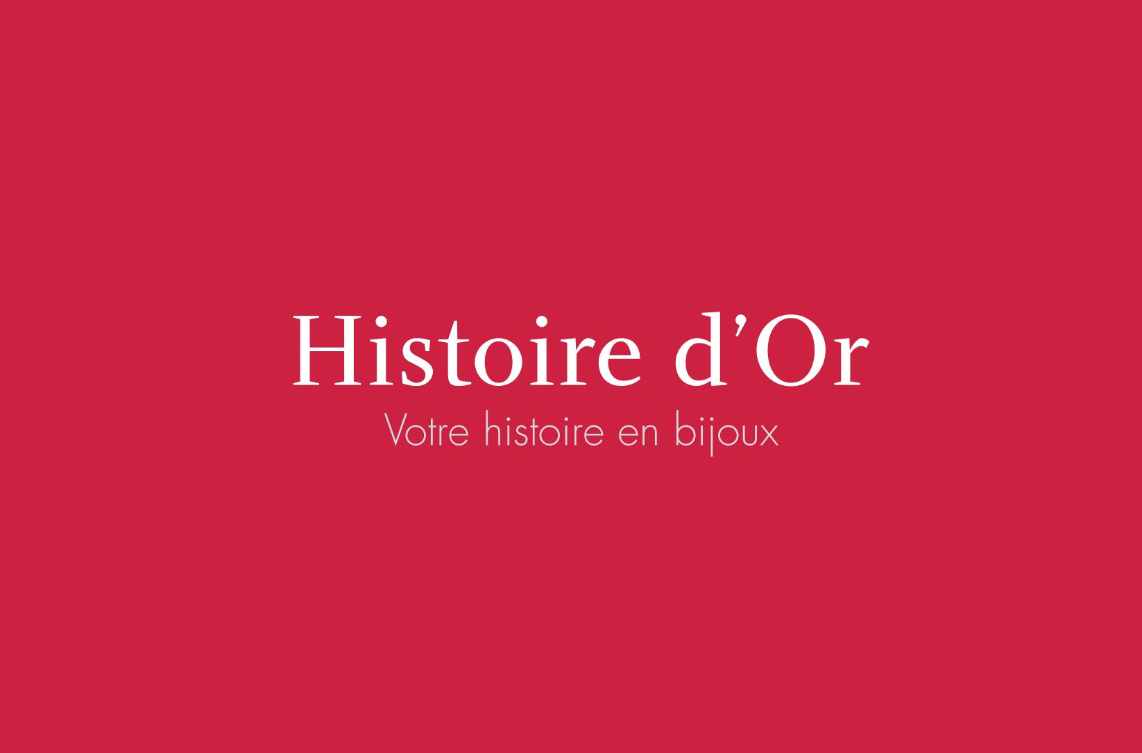 logo histoire or