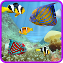 Aquarium and fishes icon