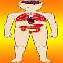 Body Parts - Internal Organs