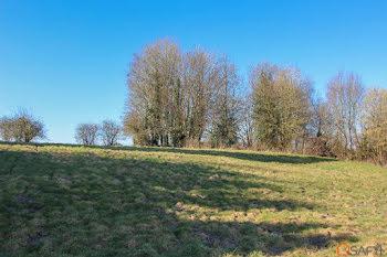 terrain à Le Parcq (62)
