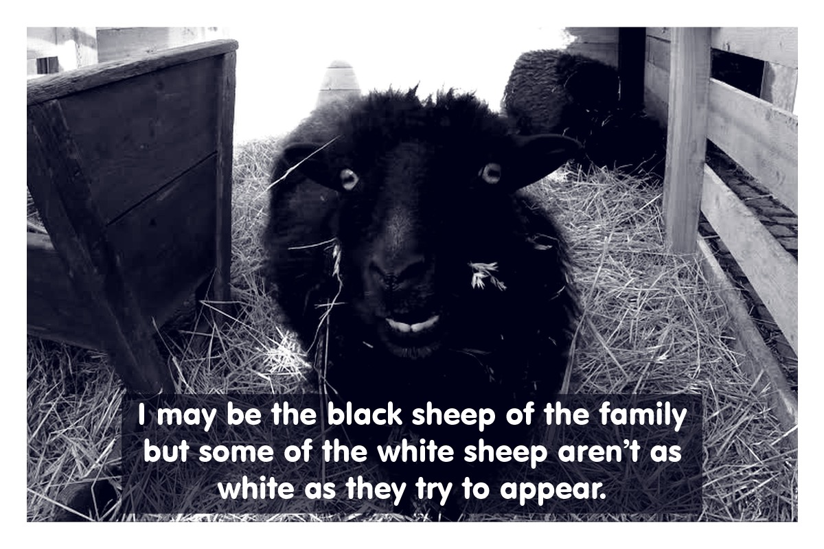 Every Family Needs A Black Sheep