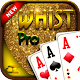 Whist (game)