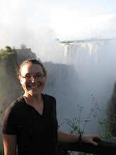 Photo: A bit further back close to the bridge that links Zambia and Zimbabwe
