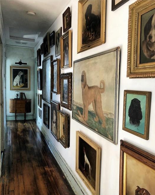 Hang Your Pet's Portraits along the Hallway Wall