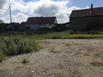 terrain à Hirtzfelden (68)