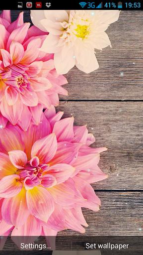 Flowers on wood Live Wallpaper