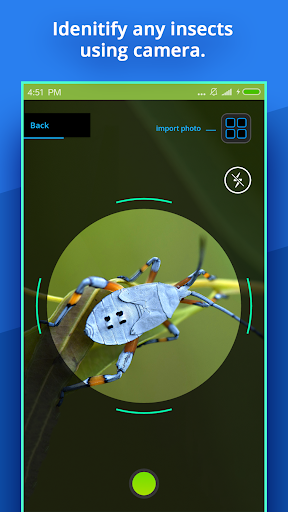 Insect Identifier v1 2 2 [Paid] – Android APK Download with apkxmods com