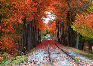 Photo: 1.These are the Hibernia Mine Railway tracks. There were two things that attracted me to this shot. First was the linear view down the empty tracks covered with a tarp of bold autumn colors.  And secondly, my interest in the NJ canals.For publication 12/5/2010 2. Shabe 3. Shabe Rockaway NJ 201-459-2840