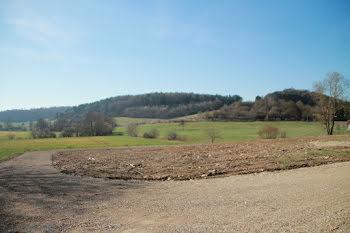 terrain à Fresnes-en-woevre (55)