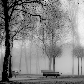 Early Morning... by Edit Peterffy - City,  Street & Park  City Parks ( lights, b/w, walking man, park, shadows, city, black and white, b&w, portrait, people, photography )