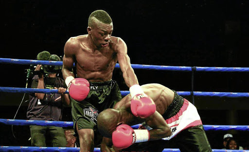Rofhiwa 'Tsetse Fly' Nemushungwa will take on Joshua 'TKO' Studdard at Emperors Palace on December 4.